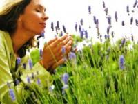 Применение эфирных масел. Целительная мощь ароматерапии!
