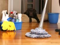 Как сделать уборку — простые советы и оптимальные решения!